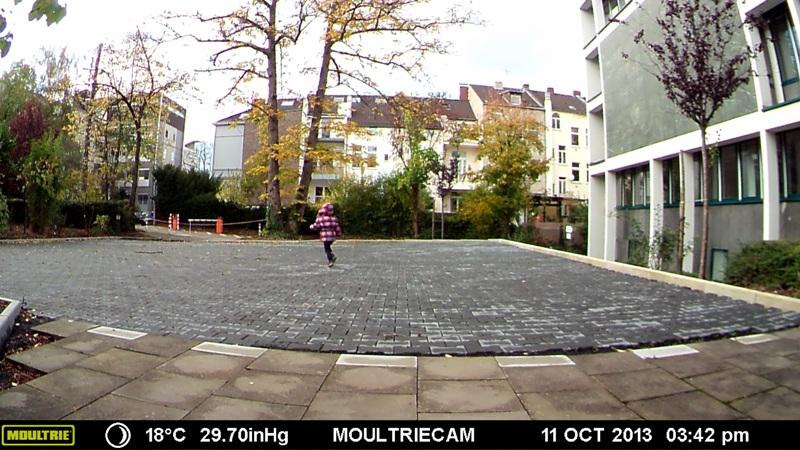 Die gleiche Testszene mit der Moultrie D555i Weitwinkelkamera aufgenommen - Bild: Wildkamera-Test.com