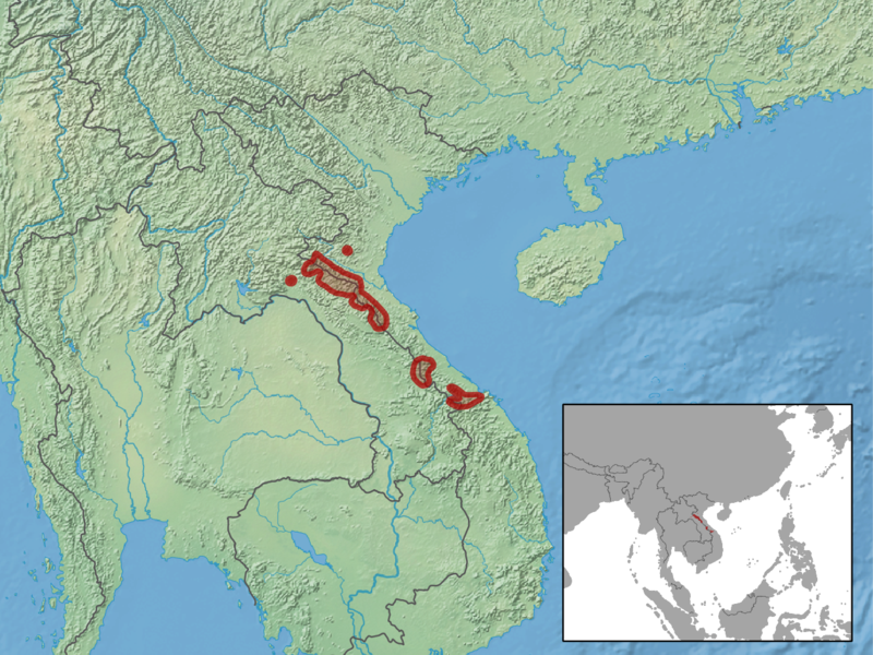 Verbreitungsgebiet Saola-Wild - Karte: Wikipedia