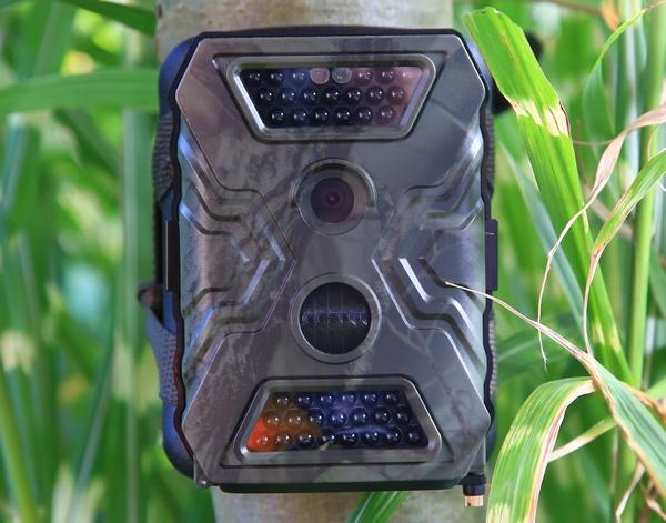 Die beiden LED-Felder mit insgesamt 40 nachts unsichtbaren LEDs verhelfen der Wildkamera zu sehr gut ausgeleuchteten Nachtaufnahmen - Bild: Wildkamera-Test.com