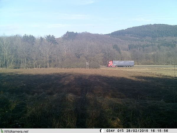 Die Wildkamera, hier eine Wild Vision Full HD 5.0, erwischt den LKW - Bild: Wildkamera-Test.com